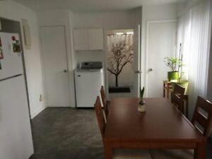 Appartement 3 et demi à louer sous-sol,625$rien inclus Longueuil