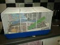 Hamsters cage with accessories