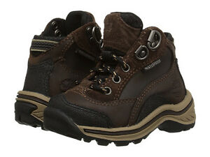 Toddler Timberland Boots size 5 US (20 E.U - 12,1 cm.), brown