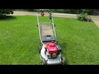 Need your grass cut ?