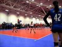 Volleyball MONDAY GYM RENTAL SPECIAL! $25 hr!