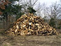 Need firewood split?