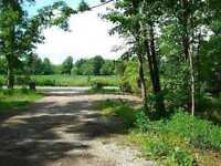 Build Your Dream Home On 9.58 Acres Of Pristine Land