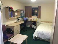 Wonderful double room in Kings Cross