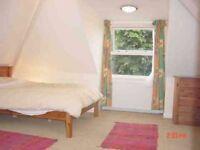 Fantastic double bedroom - Willesden Green (Zone 2)