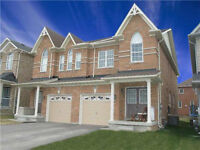 New Semi-Detached  For Rent In Newmarket