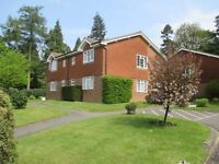 Lovely spacious 1 bedroom ground floor flat to rent
