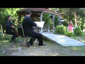 WANTED: STRING DUO - VIOLON & CELLO West Island Greater Montréal image 1