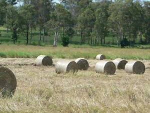 Hay and Silage For Sale Woolooga Gympie Area Preview