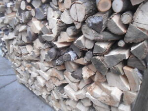 Split and cut (12-inch lengths) face cord of firewood
