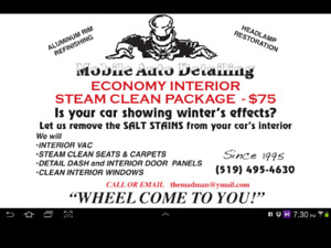 $75 ECONOMY INTERIOR STEAM CLEAN    MOBILE AUTO DETAILING