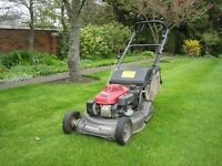 grass & hedge cutting & garden clearance & tree and hedge removal