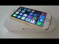 looking for Apple Iphone 6 gold (16gb) open to any network