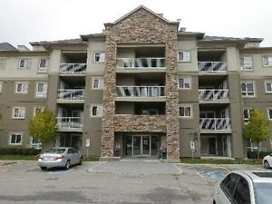 Great Opportunity To Own This Beautiful Corner Unit