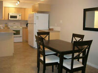 Fully Furnished 2 Bedrm & 2 Bath Downtown Condo, Avail Immed