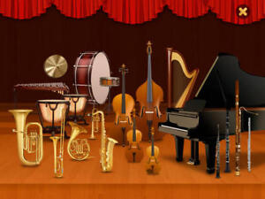 Professional Private Music Lessons: $25/h