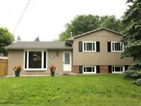 Detached Gem In Downtown Waterdown