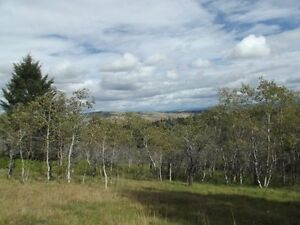 Acreage with view and well