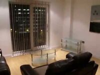 XQ7 Good sized STUDIO apartment to let from 24th December