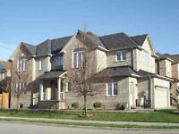 In Vaughan/Maple -  Basement Apartment for Rent