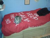 Ashcraft Single Cabin Bed + Silent Night sprung mattress