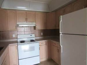 Two Bedroom Condo - 45 Plus Building with Pool