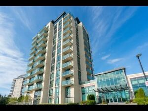 BRAMPTON AREA-FURNISHED CONDOS-WEEKLY/MONTHLY BASIS