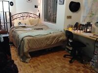 $375 Room Sublet in Plateau from Jan 1- June 31 (negotiable)