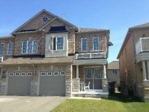 Outstanding 1,800 Sq Ft. 4 Bedroom 3 Bath Semi-Detached Home