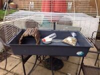 rabbit indoor/outdoor hutch and cage