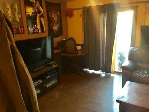 SEMI for Rent available Dec 1/16 or Jan 1/17 Kitchener / Waterloo Kitchener Area image 8