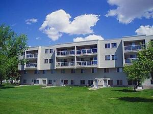 *INCENTIVES* 2 Bdrm in Family Bldg Across From Walmart!~196