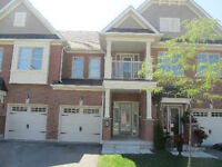 STOUFFVILLE Townhouse or Semi-Detached