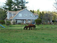11.4 acre hobby farm in caledon