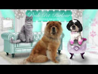 Dog grooming assistant for wimbledon and weybridge area. Washing, drying, brushing, cleaning....