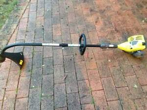 Ryobi Whipper Snipper Springwood Blue Mountains Preview