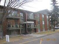 WONDERFUL ADULT 2 BEDROOM CLOSE TO SOUTHGATE AN U of A.