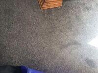 Grey/silver hessian backed carpet large 15'8 x 13'4 plus underlay