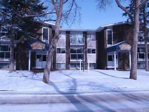 1 Bedroom condo near whyte/University of Alberta