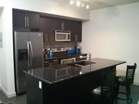 FULLY FURNISHED 1 BEDROOM IN DOWNTOWN