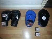 Muay Thai/Boxing Gloves, Wrist Wraps and Pads Set