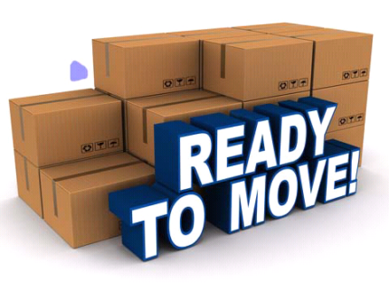 BFM removal company start from $35