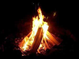 Good Dry Campfire Wood