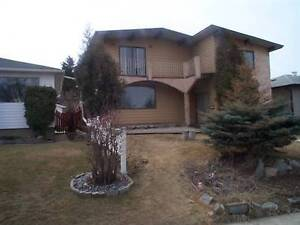 2 bedroom, two level basement suite - 10 mins to the U of A