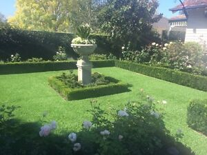 Synthetic Grass Armadale Stonnington Area Preview