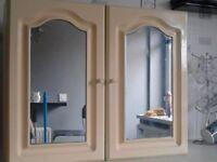 mirrored bathroom cabinet