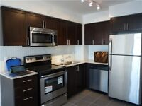Lawrence/Dufferin New One bedroom for Rent