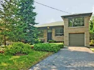 4 Bdrm Home-excellent condition-Finished Basement - Private Yard