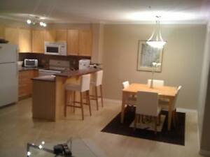 Fully furnished - Executive 2 Bedroom/2 Bathroom downtown condo