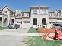 Free Hold Town House For Sale, Brampton House For Sale .